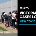 Shepparton coronavirus testing facilities overwhelmed, new alert issued for Sydney | ABC News