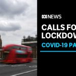 Calls for UK coronavirus lockdown amid revelation Boris Johnson ignored scientific advice | ABC News