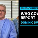 WHO investigation concludes most likely source of COVID-19 was from animals   ABC News