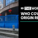 The origin of the coronavirus will be outlined in a WHO report | The World