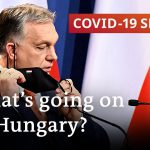 Hungary reopens amid spike in COVID deaths | COVID-19 Special