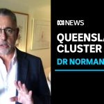 Norman Swan says national guidelines not good enough to contain COVID-19 | ABC News