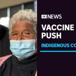 COVID-19 vaccine rollout begins in vulnerable Indigenous communities   ABC News