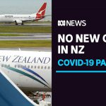 No new cases of community transmission in Auckland after airport worker's positive test   ABC News
