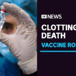 Authorities investigate after blood clot death likely linked to AstraZeneca vaccine | ABC News
