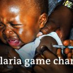 New malaria vaccine proves 77% effective in trials | DW News