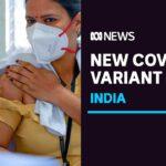 New 'double mutant' coronavirus variant found in India | ABC News