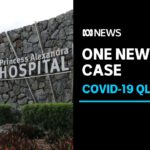 Close contacts of Brisbane COVID-19 doctor test negative as contact tracing continues | ABC News
